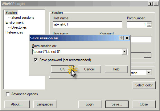 winscp command line overwrite a file
